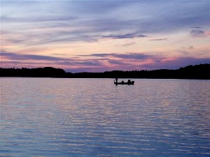 Chippewa Flowage muskie fishing guide service near Hayward Wisconsin